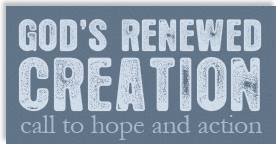 God's Renewed Creation